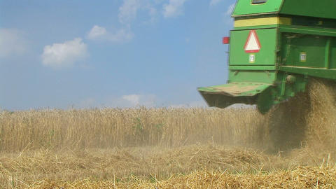 Combine Harvesting Wheat 04 Stock Video Footage