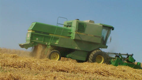 Combine Harvesting Wheat 06 Stock Video Footage