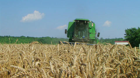 Combine Harvesting Wheat 08 Stock Video Footage