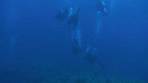 Scuba diving Stock Video Footage