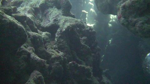 Underwater cave Stock Video Footage