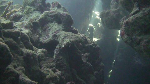 Underwater cave Stock Video Footage