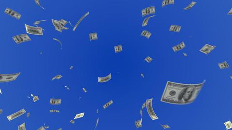 Money Dollar L c Animation