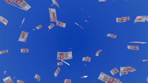 Money RMB L c Stock Video Footage