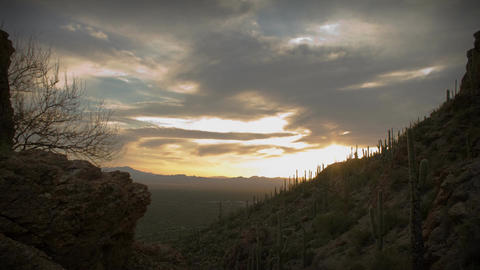 (1164) Twilight Arizona Desert Sunset Clouds with Cactus... Stock Video Footage