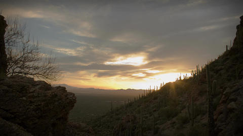 (1164) Twilight Arizona Desert Sunset Clouds with Cactus Saguaros Footage