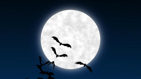 Bats over moon Animation