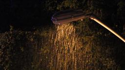 rain shower under the street light Footage