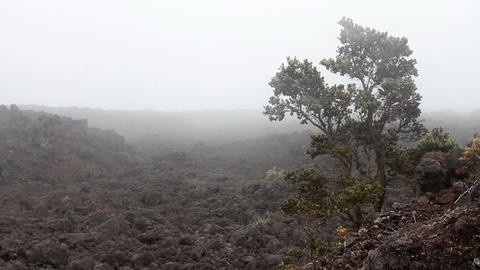 Desolate Lava Rock Landscape 1 Stock Video Footage