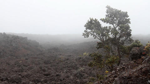 Desolate Lava Rock Landscape 1 Footage