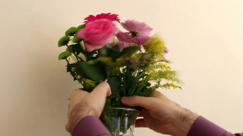 The Guy Places Bunch Of Flowers In Vase 4 stock footage