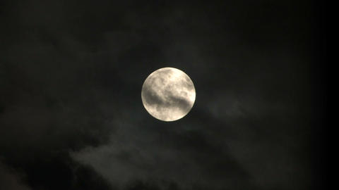 Full Moon Live Action