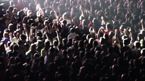 Cheering Crowd at Concert 2 Footage