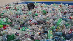 Recycling - plastic bottles at recycling center 6 Live Action