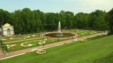 Fountain Bowl. Peterhof. Fountains. Petrodvorets.  Footage