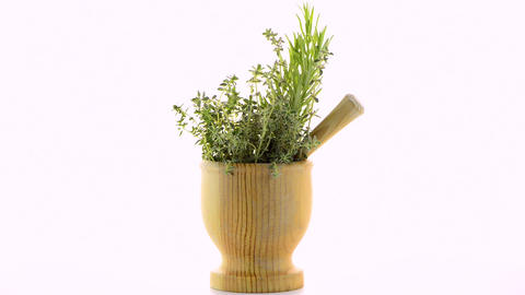 Green herb leafs Live Action