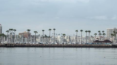 Shoreline Village Long Beach Time Lapse Video Live Action