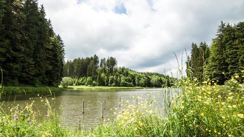 Wolken Am Hagerwaldsee stock footage