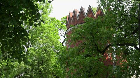 Admiralty. Pushkin. Catherine Park. Tsarskoye Selo Footage