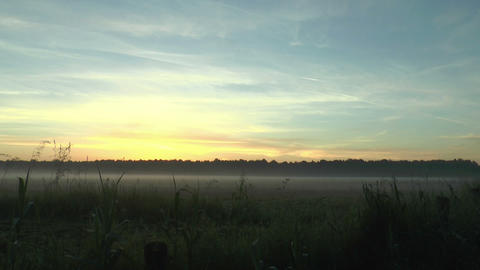 Timelapse Landscape Bank Of Fog During Sunrise stock footage