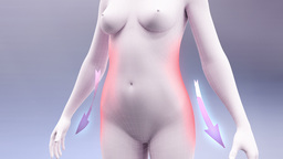Body Fit - Stock Video Animation