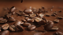 Slow motion coffee beans falling Animation