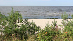 Baltic Sea And The Beach - Landscape stock footage