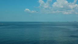 Plane Approaching Over The Sea stock footage