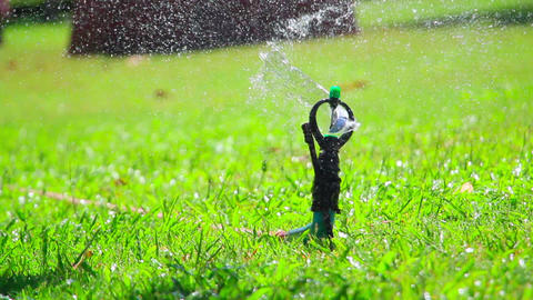 water jet sprinkling green grass close-up Footage