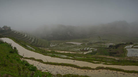 Foggy rice terraces in Sa Pa timelapse Footage