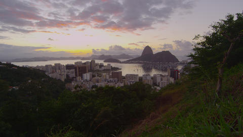 Tracking footage from Tijuca National Park of Rio de Janeiro, Sugarloaf, and Bot Footage