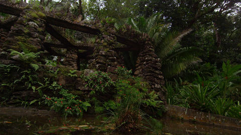 Tracking shot looking up at stacked stone structure in the Jardim Botanico in Ri Footage