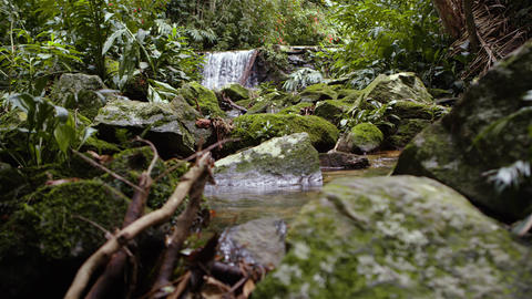 Tracking footage of a jungle waterfall Footage