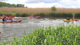 Children's Kayak race, kayaking in nature Footage