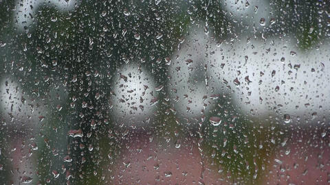 Raindrops at daytime Stock Video Footage