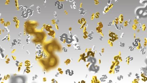 Money Symbol 2B dollar w HD Stock Video Footage