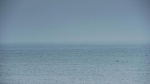 Calm sea Stock Video Footage