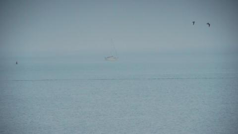 Calm sea Footage
