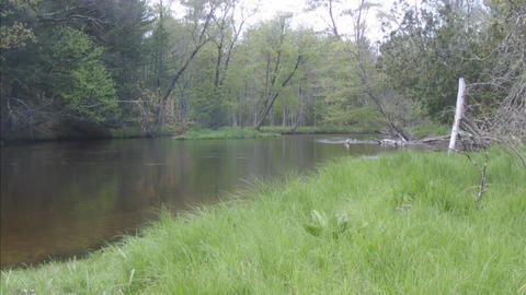 River water flowing away with grass field 2 Stock Video Footage
