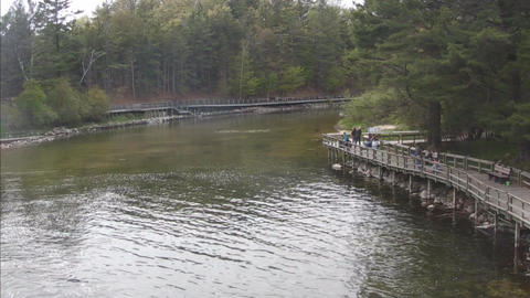 Still water with boardwalk Stock Video Footage