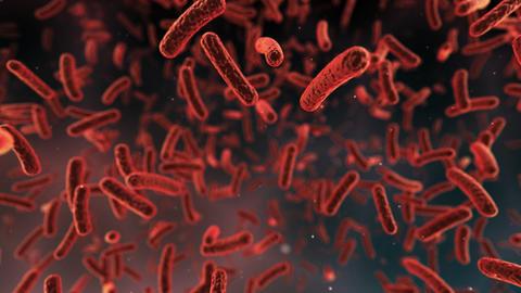 Virus Cell C aa Stock Video Footage
