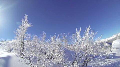 Snowy European Alps Footage