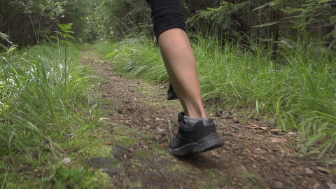 SLOW MOTION: Close up female running through the f Footage