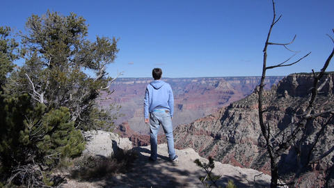 SLOW MOTION: Cheering man in Grand Canyon Footage