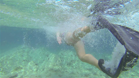 UNDERWATER: Swimming With Flippers stock footage