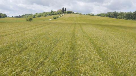 AERIAL: Fields 2