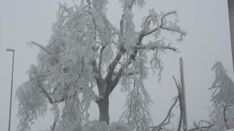 Freezing rain in Europe Footage