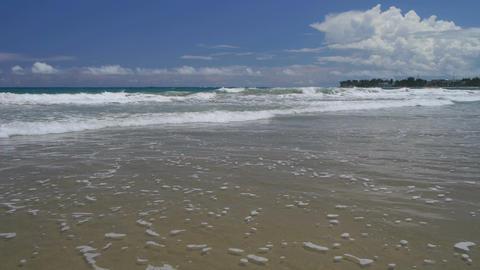 Tropical beach Footage