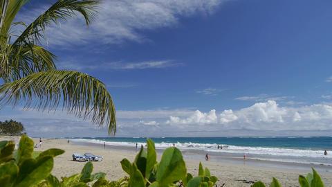 DOLLY SHOT: Tropical beach Footage