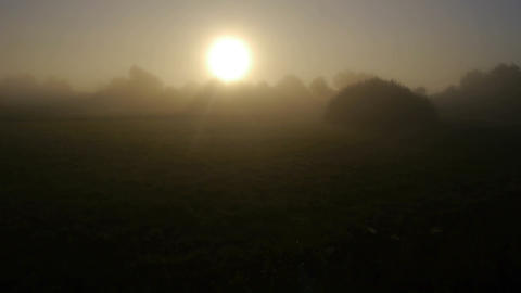 AERIAL: Misty sun in the morning Footage